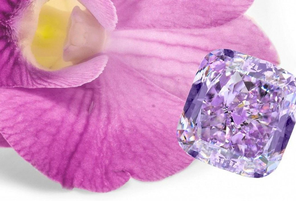 never violet the seen be open display style colored argyle on before month diamonds ring four report victorian purple will and diamond to orchid yellow spotlights go rare a orange jewelry three embed exhibit public robb carat